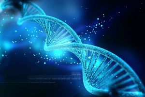 Genetic Testing in Women With Ovarian Cancer Helps to Determine Prognosis