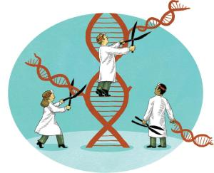 Precision Medicine Yields Better Outcomes for Patients in Phase I Clinical Trials