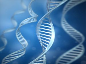 Study Links Ovarian Cancer Growth to Gene Defects