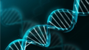 Researchers Use Genetics to Identify Cancer Recurrence Risk