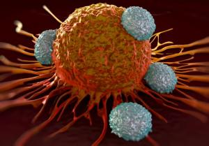 Effective Immunotherapy Steps Closer With New T Cell Study