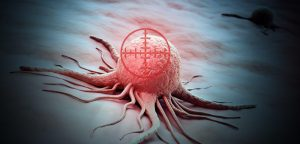 New Drug Discovery Program Identifies Potential Treatments for Ovarian Cancer, Other Diseases