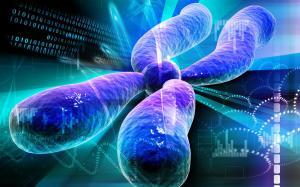 Tumor Profiling Panel Undergoes Simultaneous FDA, CMS Review